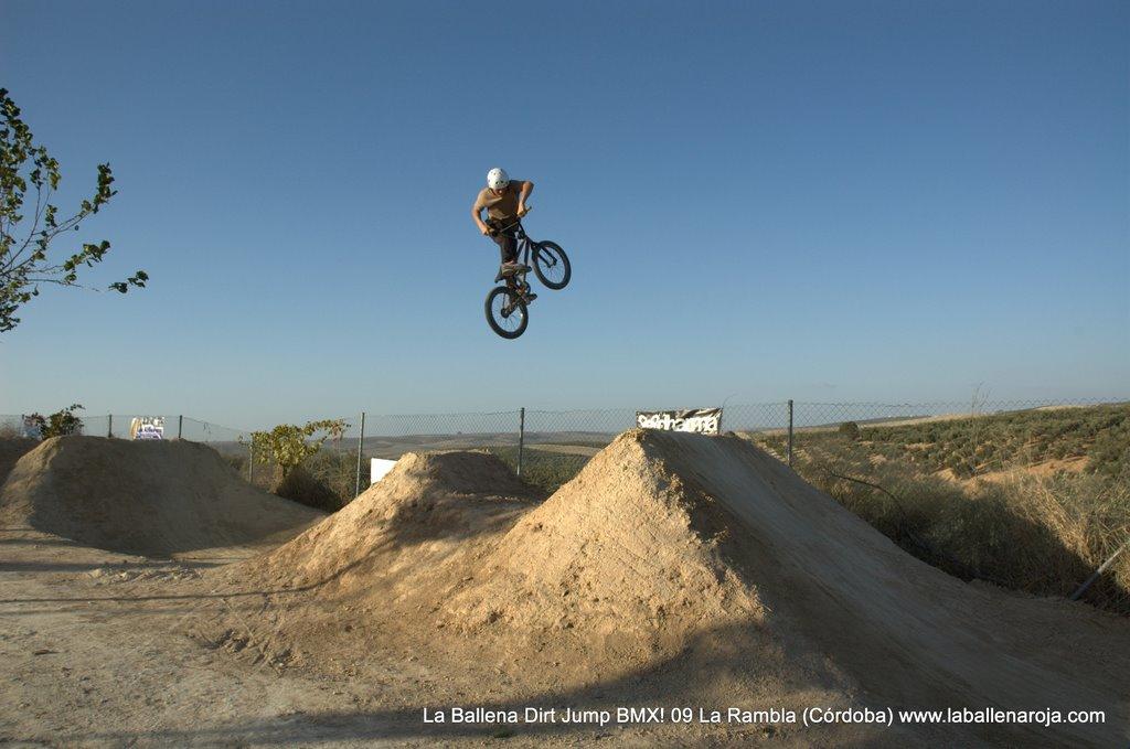 Ballena Dirt Jump BMX 2009 - BMX_09_0113.jpg