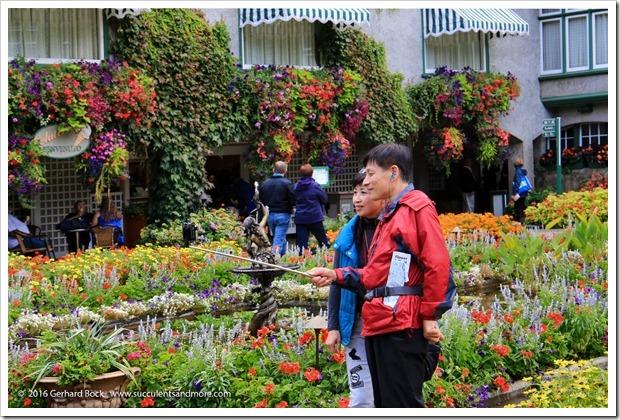160906_Butchart_Gardens_0143