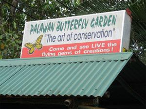パラワン蝶園