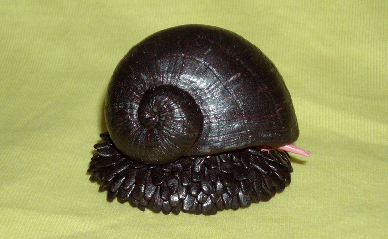 scaly foot gastropod the snail with an armor of iron amusing planet