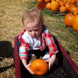 Pumpkin Patch - 114_6557.JPG
