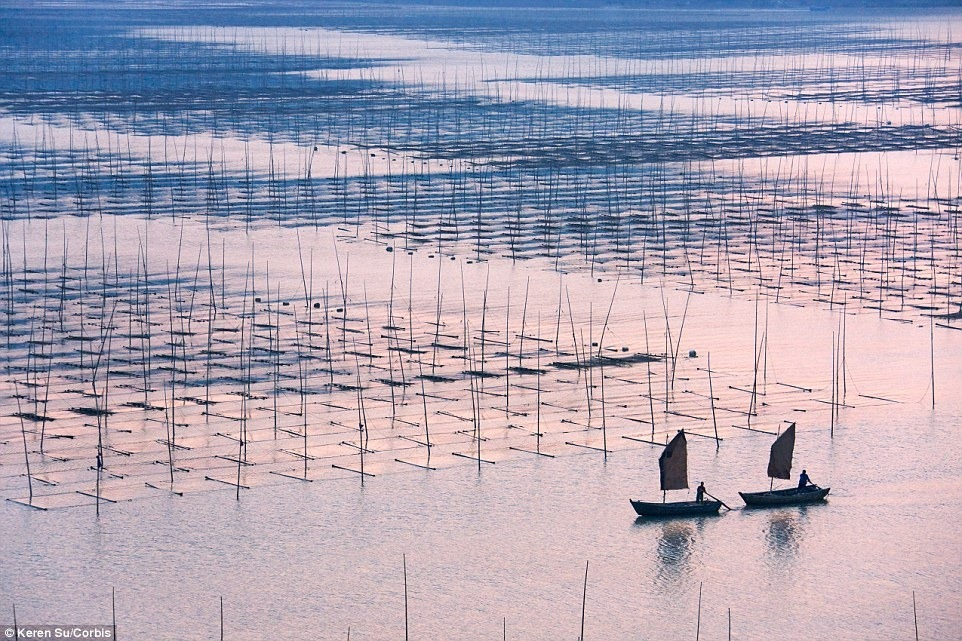 aquaculture-farm-china-7