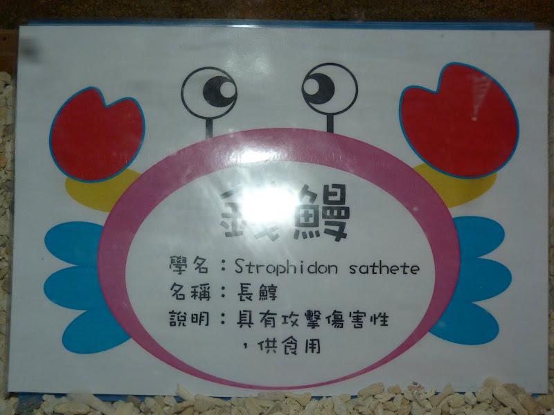 TAIWAN.Toucheng .musée du crabe situé au Pei Kan Resort, surfers,maison Japonaise du chef de gare - P1080728.JPG