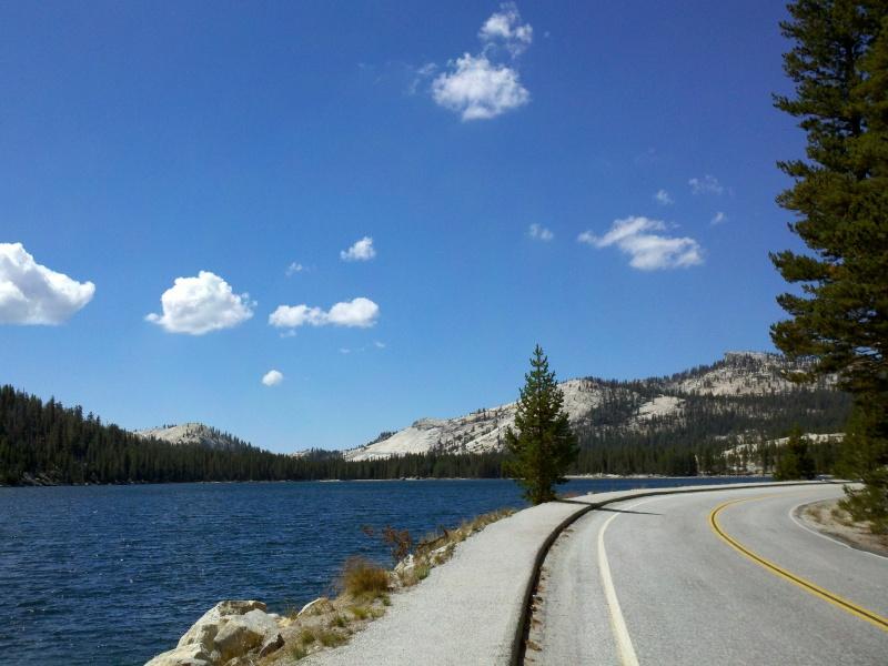 High Sierra • Tenaya Lake