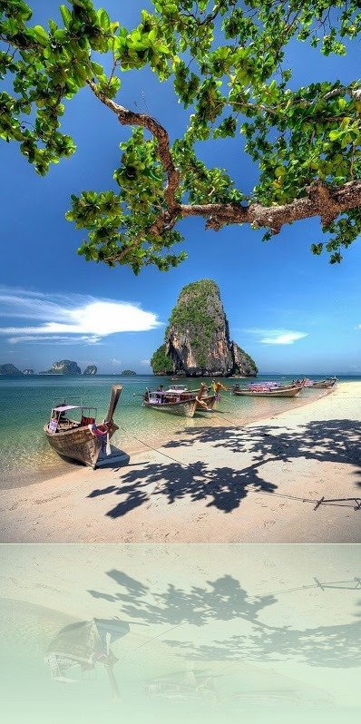 thailand dddd