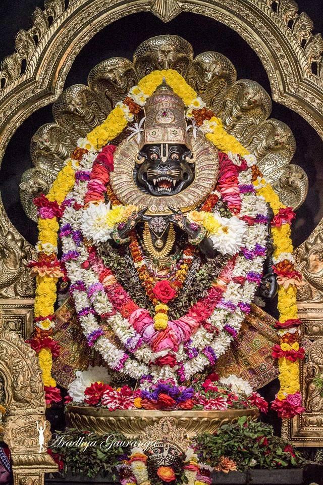 ISKCON Mayapur Deity Darshan 02 Feb 2016 (23)