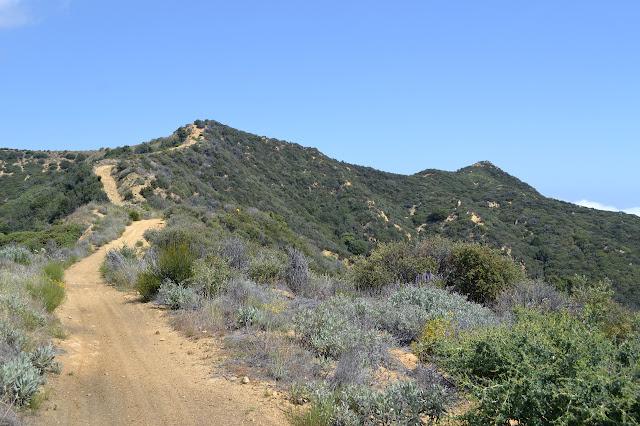 Noon Peak