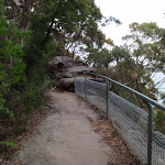Manly Scenic Walkway (82444)