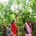जल सहेलियों ने वृक्षों को बांधी राखी,घर बैठे  मनाया रक्षाबंधन।