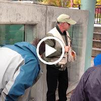Issaquah Salmon Hatchery Tour - YWXkbCxyQC8KHd74NtIwLDHdUWtZm-rQAvv1rWK0PC2IH63sC3YU2auW4Nc1dgHrhQqzxDUQGA=m37