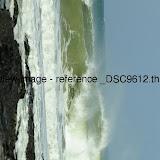 _DSC9612.thumb.jpg
