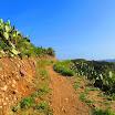 santiago-oaks-IMG_0442.jpg
