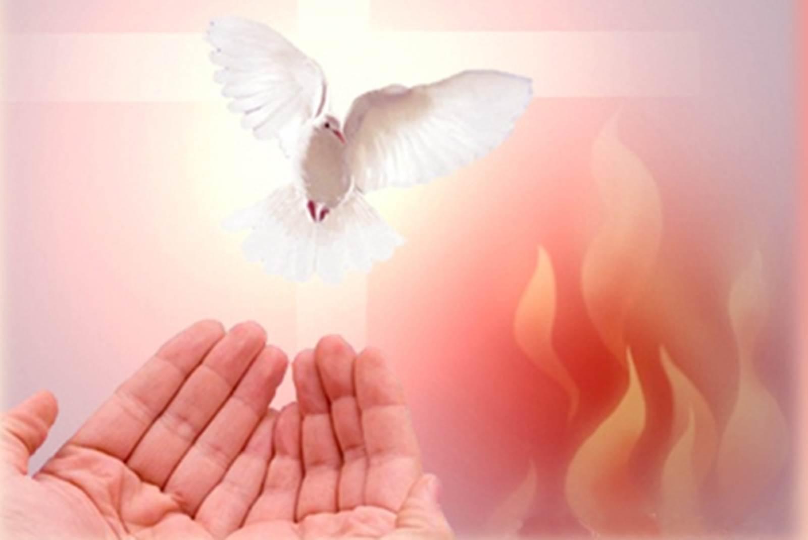Hãy nhận lấy Thánh Thần (31.5.2020 – Chúa Nhật, Lễ Chúa Thánh Thần hiện xuống)