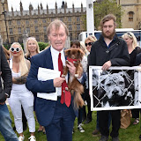 OIC - ENTSIMAGES.COM - Sir David Amess MP at the Puppy Farming Protest - demonstration and photocall 24th May 2016, rally and photocall in London's Parliament Square to raise awareness of the UK's cruel puppy farming trade, in association with PupAid, Boycott Dogs4Us and C.A.R.I.A.D.  Photo Mobis Photos/OIC 0203 174 1069
