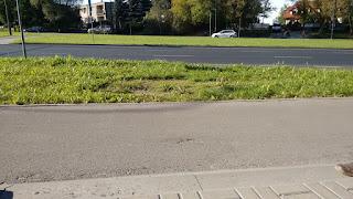 Wykruszenia i widoczne nie otoczone asfaltem kruszywo (strona wschodnia).