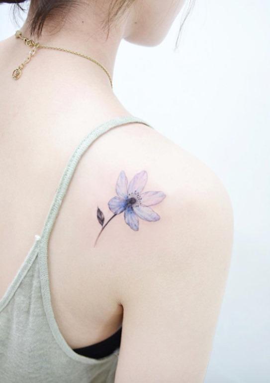 Esta bela flor azulada