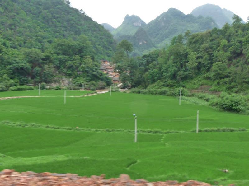Chine.Yunnan Wen shan et BA MEI 1 - P1260860.JPG