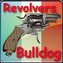 "Revolvers de type ""Bulldog"" icon"