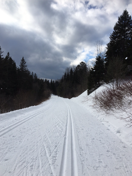 ski trail at Piedmont, on Le P'tit Train du Nord