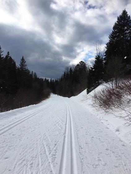 ski trail at Piedmont, on Le P'tit Train du Nord