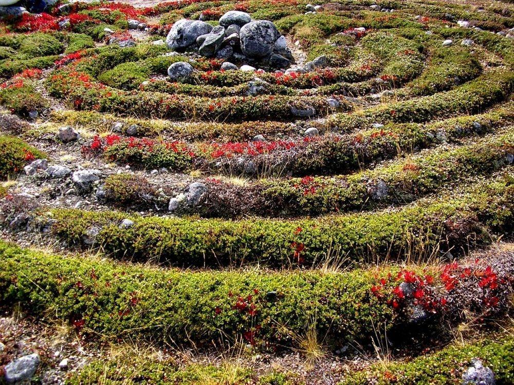 bolshoi-zayatsky-labyrinths-6