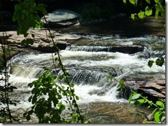 Nice cascade on Chestnut Creek
