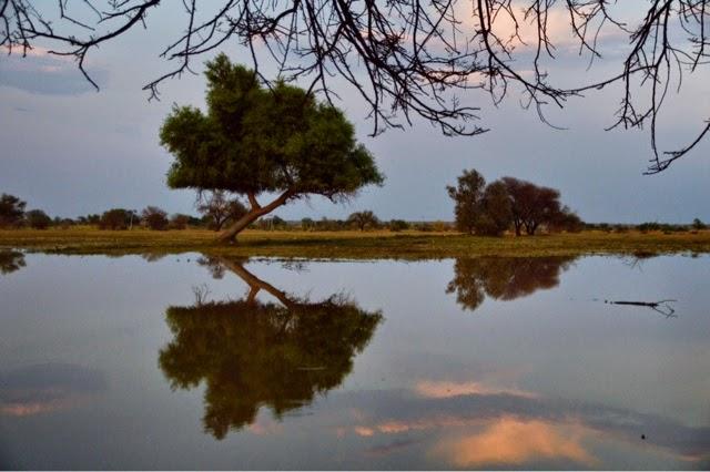 rajasthan jaisalmer Aagor Khadeens Dhora water