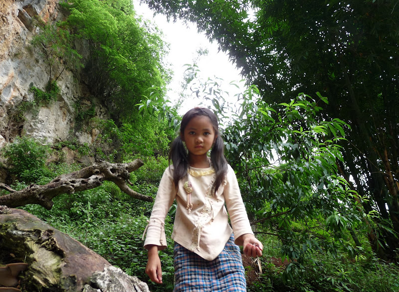 Chine . Yunnan BA MEI 2 - P1260993.JPG