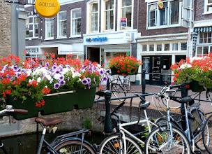 Photo: Gouda heißt nicht nur Käse, sondern auch Blumen und Fietsen. (Fahrräder)