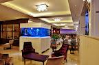 Фото 9 Mesut Hotel