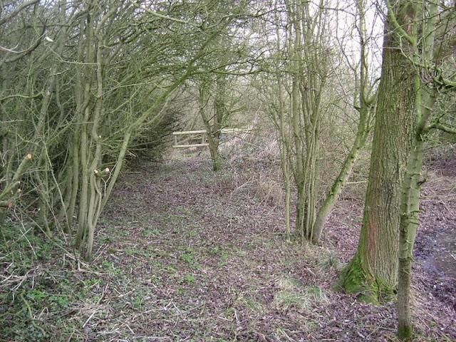 Conservation Area November 2008 - DSCF1344.jpg