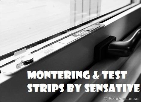 Test-Strips-MaZw-1101011