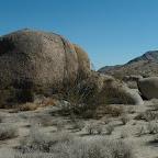 Ruig steenlandschap