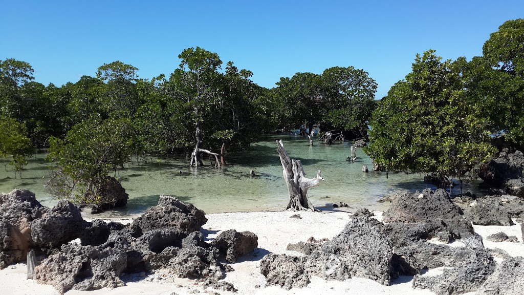 Mangroves of Vamize Island