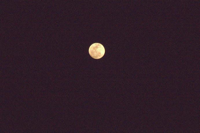 今天立夏,月亮很大很圓