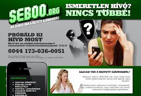 Website design és arculat tervezés a SEBOO.org-nak.