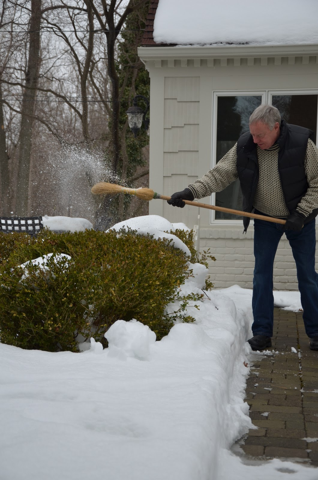 Zone Five and a Half: Shrubbery Flubbery -- Will Heavy Snow