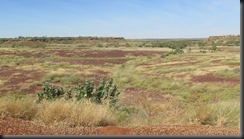 170530 017 Near Halls Creek