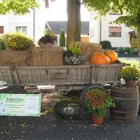 2. Auer Weinfest