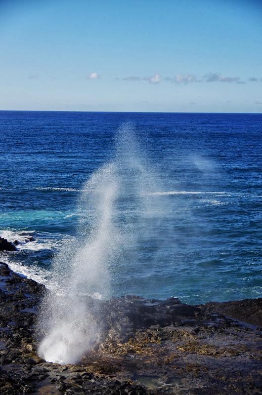 06-27-13 Spouting Horn & Kauai South Shore - IMGP9754.JPG