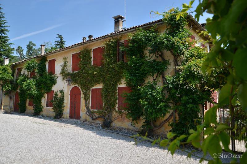 Villa Maser mostra ciliegie 37