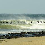_DSC8993.thumb.jpg