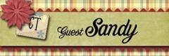 _sandy