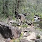 Walking beside Erskine Creek (144474)