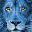 Judah's Back (GOCC Awakening)'s profile photo