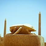 Egypt Edits (212 of 606).jpg