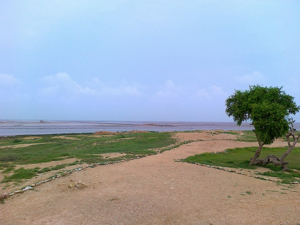 Gharo_Creek_in_the_background_The_Indus_River_Delta