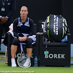Dominika Cibulkova - Topshelf Open 2014 - DSC_6705.jpg