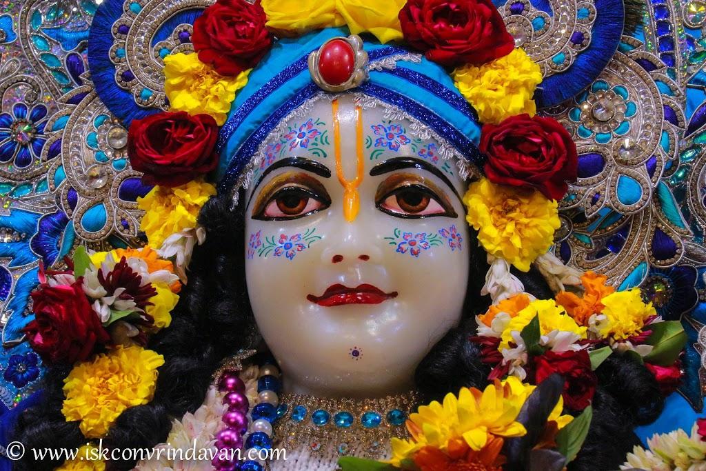 ISKCON Vrindavan Deity Darshan 10 Jan 2017 (19)