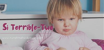 terrible-two-anak-tantrum